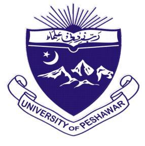 University of Peshawar MBA In Service Program Admission 2020