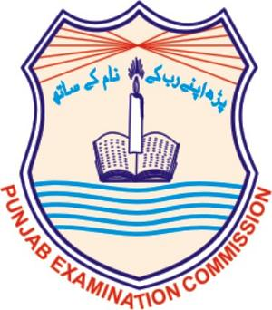 PEC 8th Class Exams 2020 Position Holders
