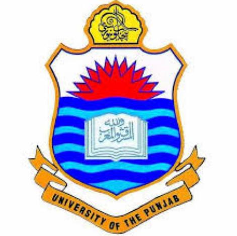 Punjab University BA/BSc & B.Com Exams 2020 Online