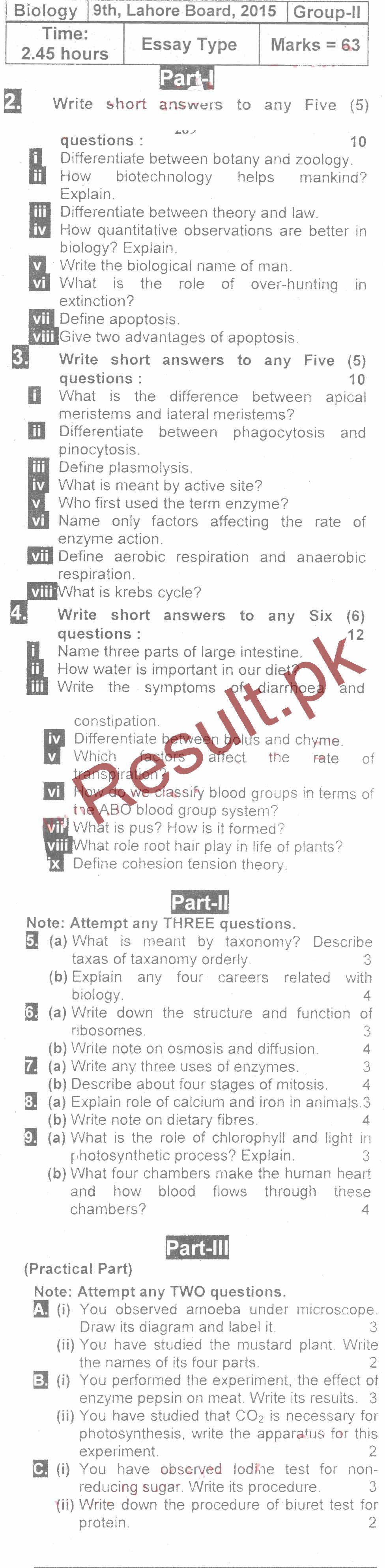 mla research papers sale Mla style research paper does your research or term paper require mla style use this accessible template to help you follow the proper guidelines.