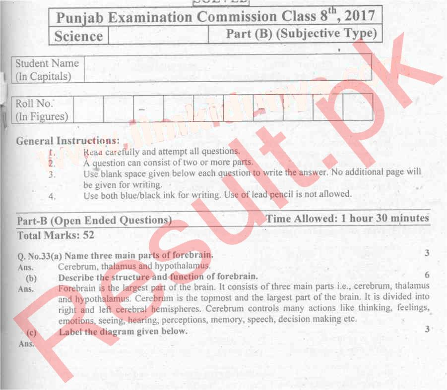 Punjab Education Commission Past Paper 2018 8th Class, Grade 8, Old