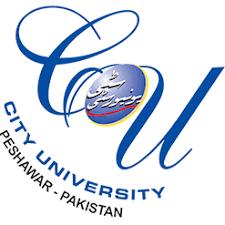 CUSIT Peshawar BSc & B.Tech Civil Engg Schedule Online Exams