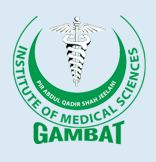 Gambat Medical College