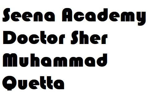 Seena Academy